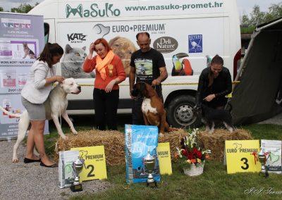 Oresta Pachino-Samobor i SvNedelja 2016(7)